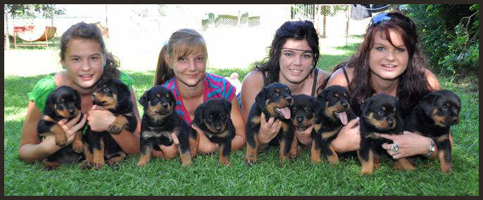 CHILDREN AND ROTTIES 1